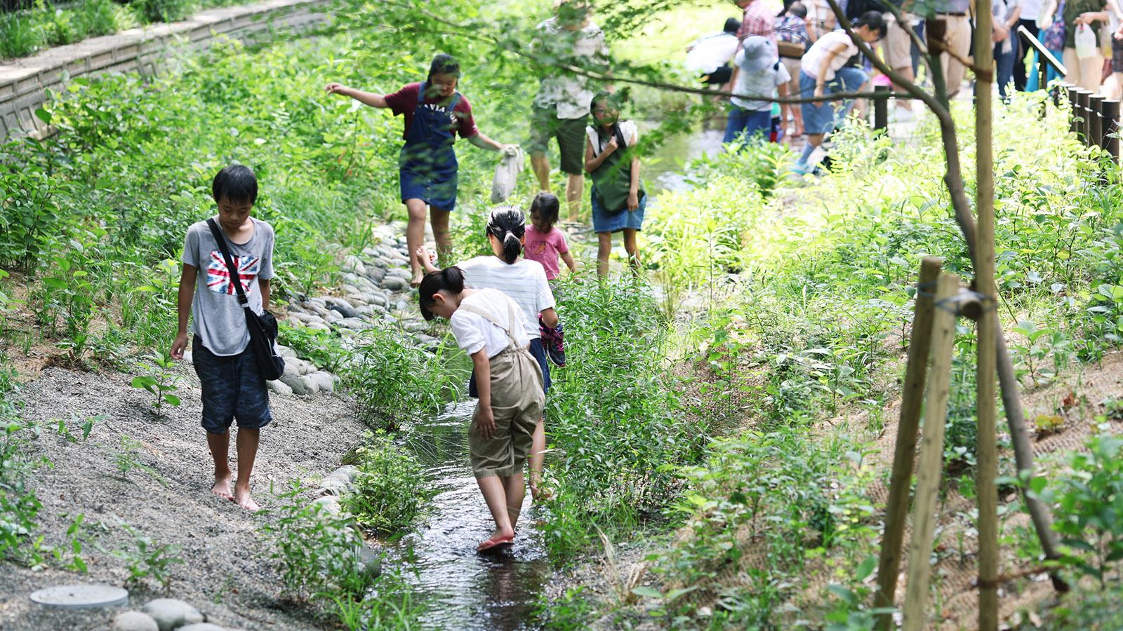 遅野井川親水施設で遊ぶ子どもたち