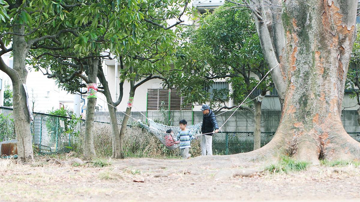 木に設置されたハンモック