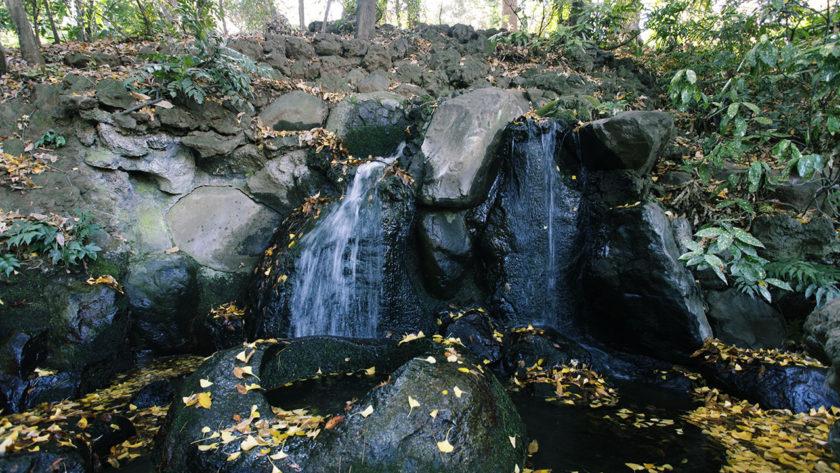 遅乃井の滝